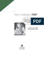 Use a Cabeca PMP