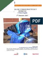 Programa de Cursos Prácticos Teóricos CTSol-Trujillo 2013-I.pdf