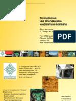 Remy Vandame_Transgenicos Una Amenaza Para La Apicultura Mex