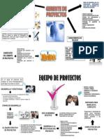 Infografia, Gerente de Proyectos y Equipo de Proyectos