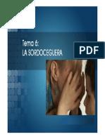 Tema6 La Sordoceguera