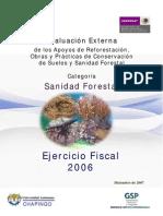 sanidad_forestal_2006.pdf
