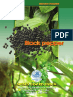 Book Black Pepper POP