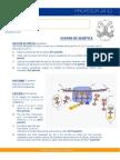 Examen Genet 1 Feb 2014.Pages