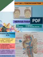 Pemeriksaan Nervus Fasialis (Nervus VII) MAR