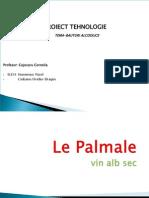 Le Palmaleh