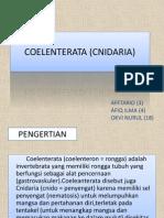 Coelenterata (Cnidaria)