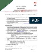 Inscripcion Adobe Velocity Program1