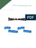 Ionut Proiect 11