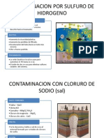 CONTAMINACION POR SULFURO DE HIDROGENO (1).pptx