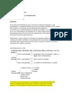 DISARTRIAS.docx