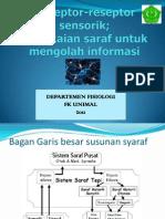 Rangkaian Saraf Untuk Mengolah Informasi