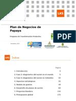 Plan de Negocio Papaya Diciembre