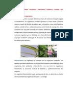 Ecologia Preg 2
