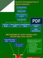 Pathogenesis TukakLambung
