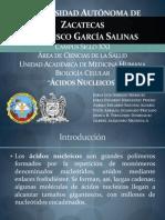 Acidos Nucleicos[1]
