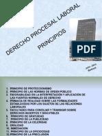 2. Principios Del Derecho Procesal