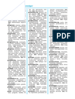Dictionary 300