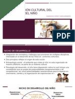 ESTRUCTURACIÓN CULTURAL DEL DESARROLLO DEL NIÑO