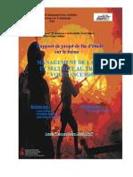 rapport final PFE.pdf