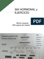 Sistema Hormonal Mintxo Lasaosa