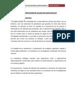 OBSERVACIÓN DE ALGAS DULCEACUÍCOLAS