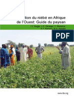 Guide production niébé