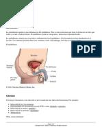 epididimitis.pdf