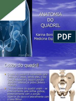 Do femoral anatomia ppt nervo