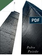 PedroPaixao-ACidadeDepois