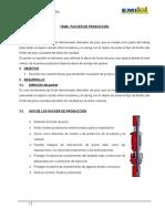 PACKER DE PRODUCCION original.doc