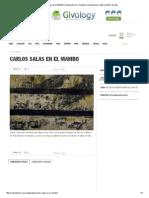 Carlos Salas en El MAMBO _ Revista Diners _ Revista Colombiana de Cultura y Estilo de Vida