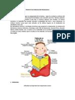 PPROYECTO DE  INNOVACION I.docx