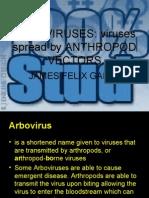 ARBOVIRUSES (2)