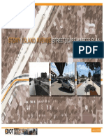Stony Island Avenue Master Plan Full Report