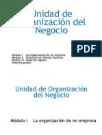 UDE II - Organizacion Del Negocio