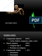 Tema 3 Sistema OSEO