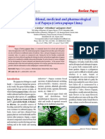 Review Papaya