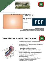 reproduccinenbacterias-120428205904-phpapp02