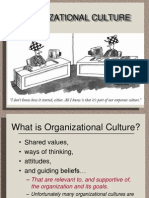 Culture & Values in Organisation