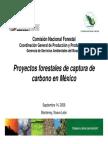 ProyectosForestales