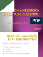 Digestion y Absorcion Del Tubo Digestivo