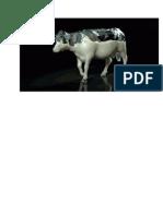 vache_stylée