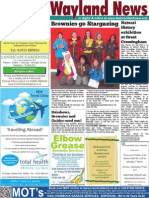 The Wayland News March 2014