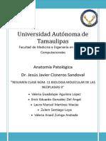 Biologia Molecular de Las Neoplasias 2