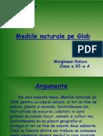 Mediile Naturale Pe Glob