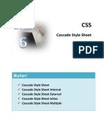 WEB CSS