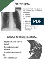 seminario de radiologia.ppt