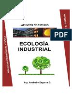 Apuntes Ecologia Industrial