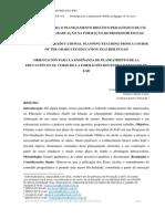 ORIENTAÇÃO PARA O PLANEJAMENTO DIDÁTICO PEDAGÓGICO DE UM CURSO DE PÓS-GRADUAÇÃO NA FORMAÇÃO DO PROFESSOR EM EAD